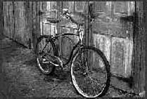 bici de montaña de Gary Fisher