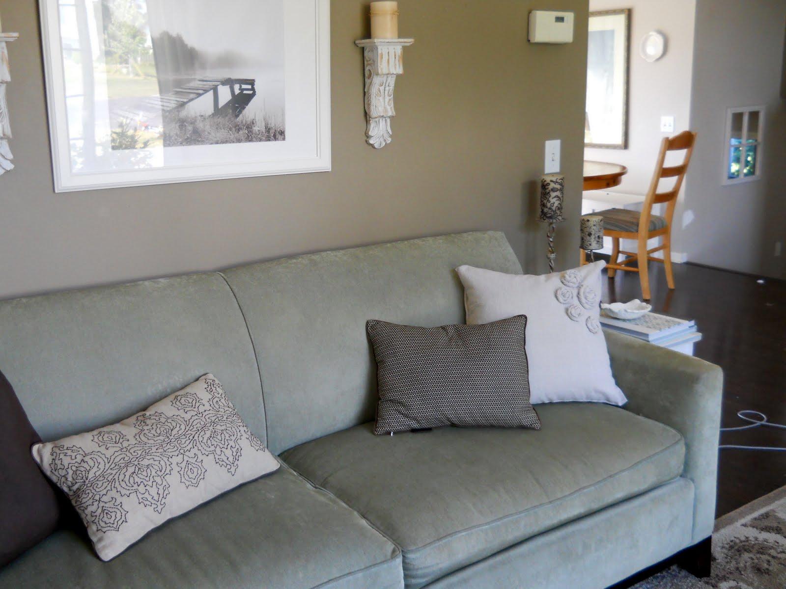 homey home design Another Drop Cloth Pillow