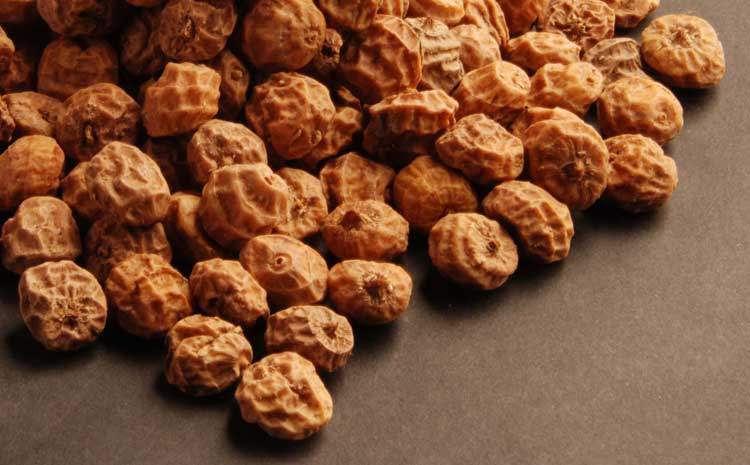 Image result for tiger nut is a tuber