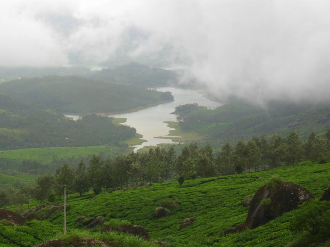 tatkal ticket: Munnar- the mystical mountains