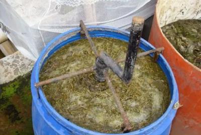 Cara Meracik Nutrisi Hidroponik Alami ( Organik )