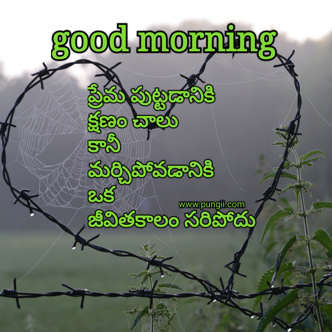 Good Morning Touching Quotes: Heart Touching Love Quotes In Telugu