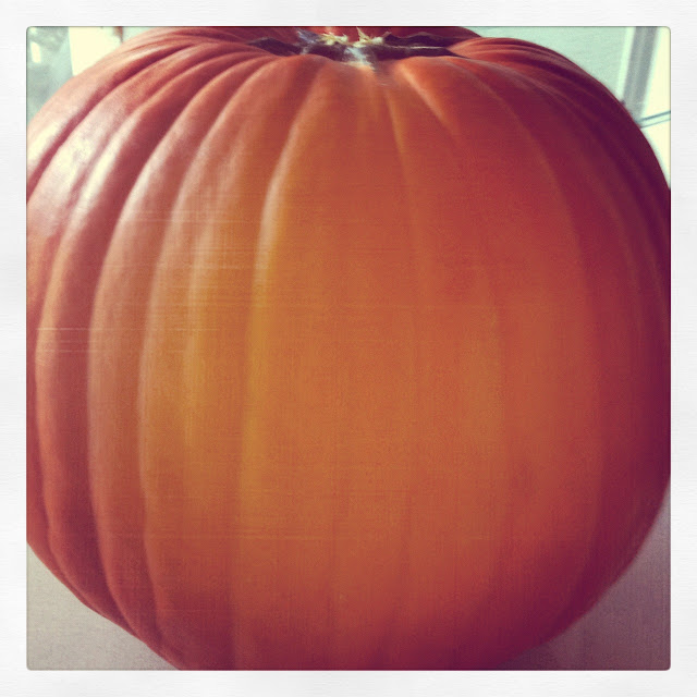 Close up of a pumpkin