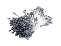 http://www.foamiran.pl/pl/p/Miniaturowe-preciki-200-sztuk-szaro-srebrne/1586