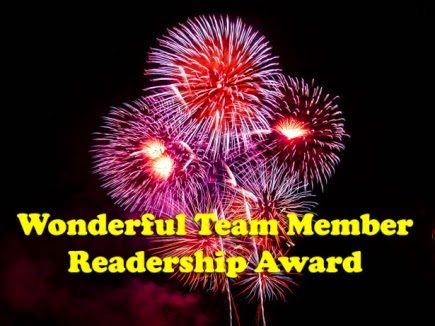 Premio  WONDERFUL TEAM MEMBER READERSHIP AWARD  2014
