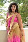 pavani new photos in saree-thumbnail-40