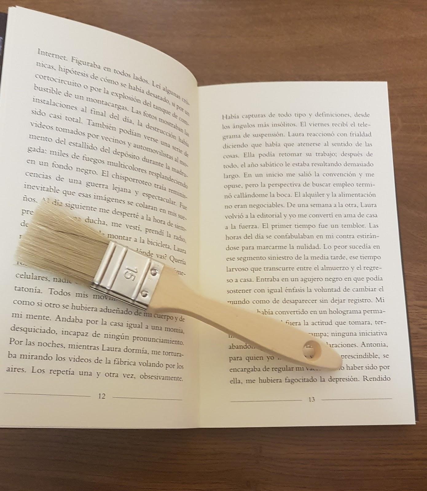 Entre Montones De Libros Cuidando Los Libros Limpieza