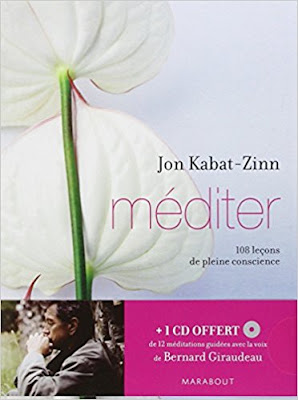 Méditer : 108 leçons de pleine conscience - Jon Kabat-Zinn - Marabout - 2011