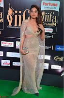 Tanya Hope Charming Beautiful Yioung Fresh Face in Designer Gown at IIFA Utsavam Awards 2017  Day 2  Exclusive 04.JPG