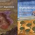 Οι «Μάρτυρες του Ιεχωβά» και η «σεξουαλική» διαφορετικότητα στα νέα Θρησκευτικά