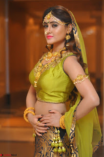 Sony Charishta in Green Choli Ghagra Transparent Chunni Ethnic Wear March 2017 009.JPG