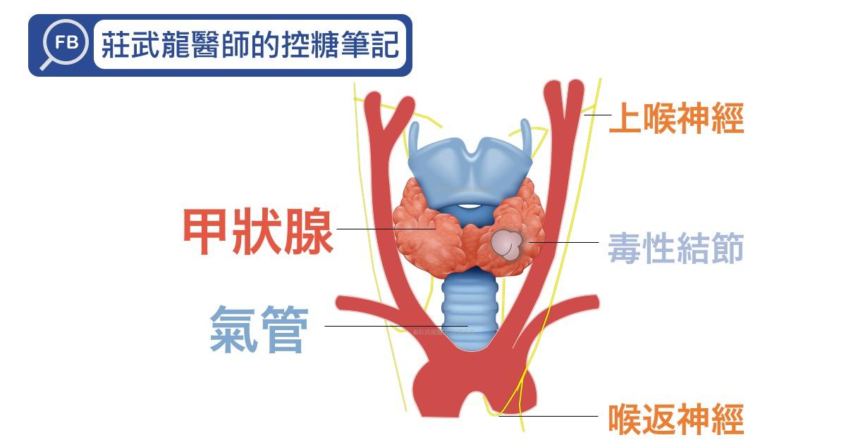 甲狀腺疾病的檢查及治療快速學習懶人包