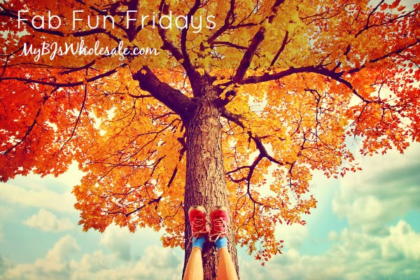 Fabulously Fun Fridays (November 7th Edition)