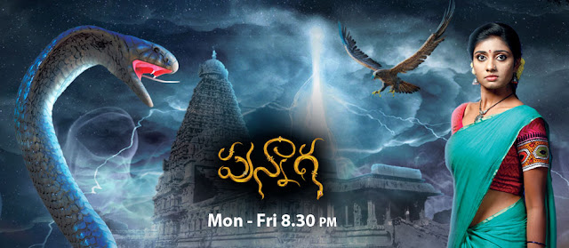 'Punnaga' Serial on Zee Telugu Wiki Story,Cast,Promo,Title Song,Timing