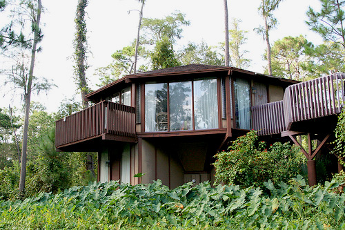 disney saratoga springs. treehouse villa