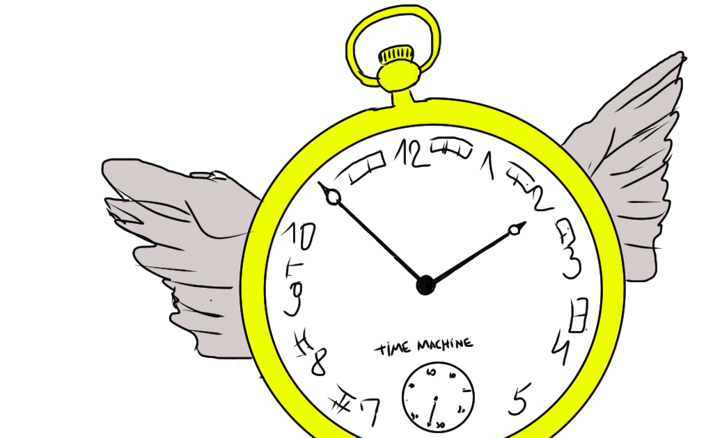 Time Travel And Other Mathematical Bewilderments