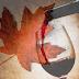 El mercado de vino en Canadá