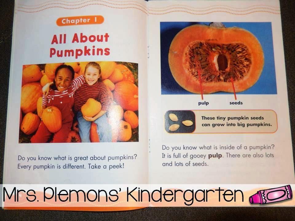 book talk tuesday pumpkins mrs plemons 39 kindergarten. Black Bedroom Furniture Sets. Home Design Ideas