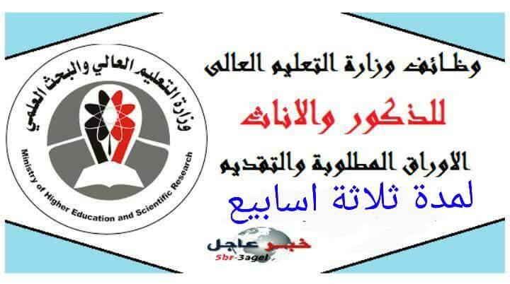 اعلان وظائف وزارة التعليم العالى للجنسين وللمؤهلات العليا والدبلومات - تقدم الان