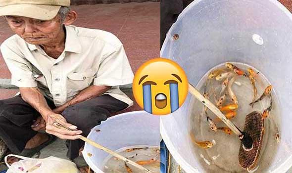 Bikin Nangis, Kisah Kakek Penjual Ikan Koi