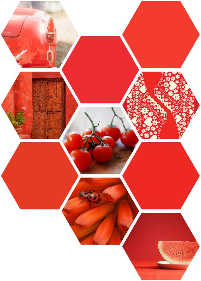 Pantone Spring 2018 color trend, red, coral red, orange red, photography, illustration, nature, food, ladybug, flowers