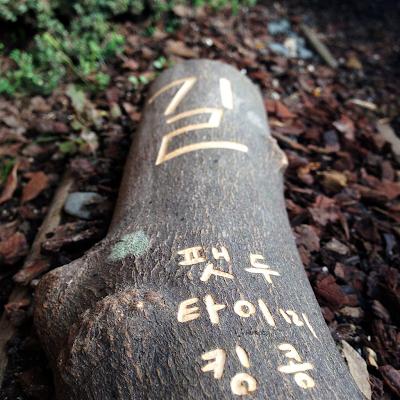 [Single] Fatdoo – 길