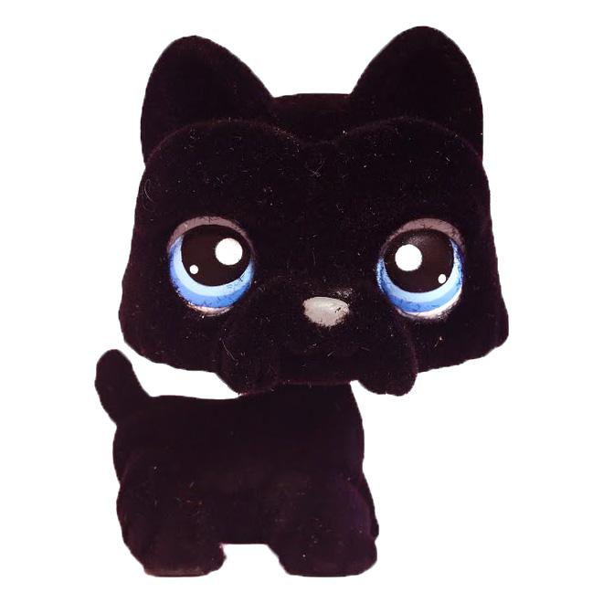 Littlest Pet Shop Portable Pets Scottie 315 Pet Lps Merch