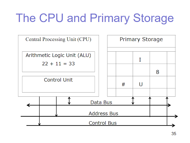 CPU and Primary Storage