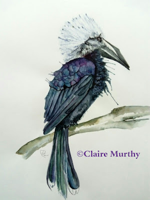 bird in watercolour