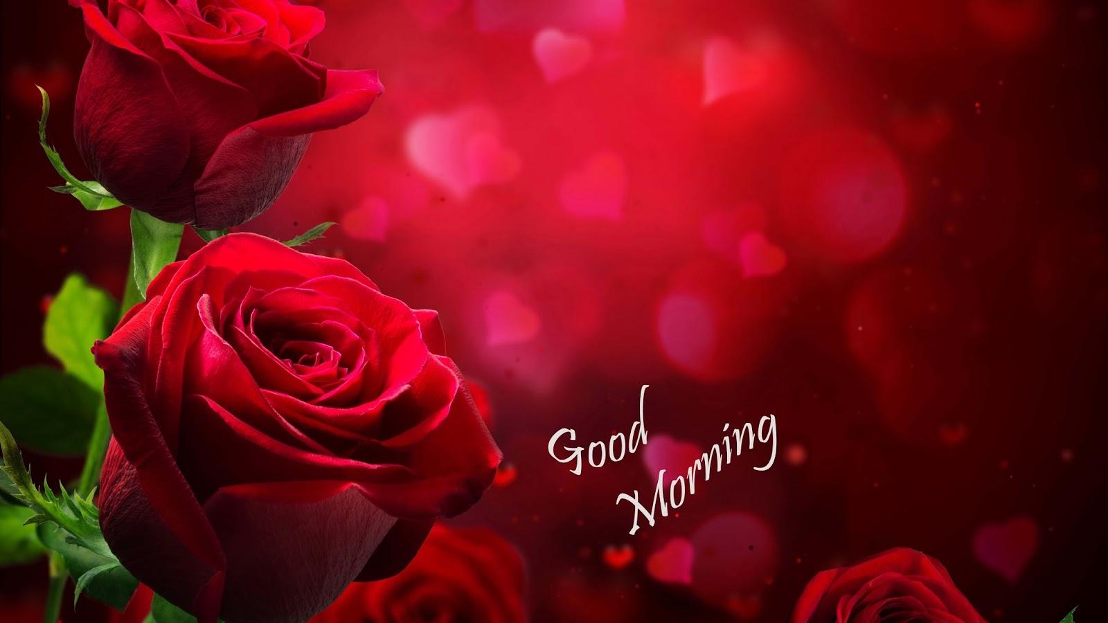 Morning Love Porn