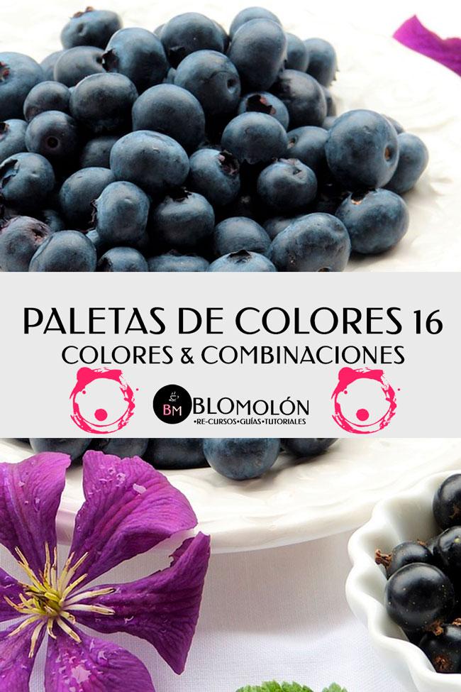 paletas_de_colores_16