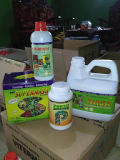 http://www.distributorpupuknasa.com/2017/11/distributor-pupuk-nasa-di-labuhanbatu-utara-sumatera-utara.html