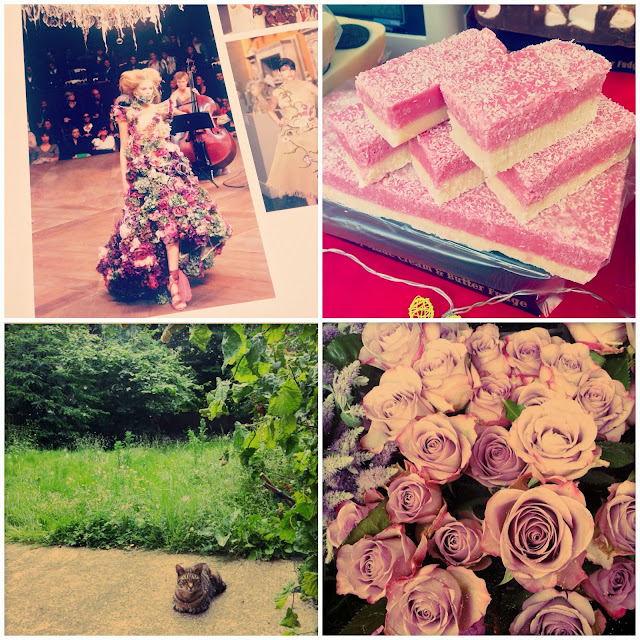 Cakes, Cats & Flowers