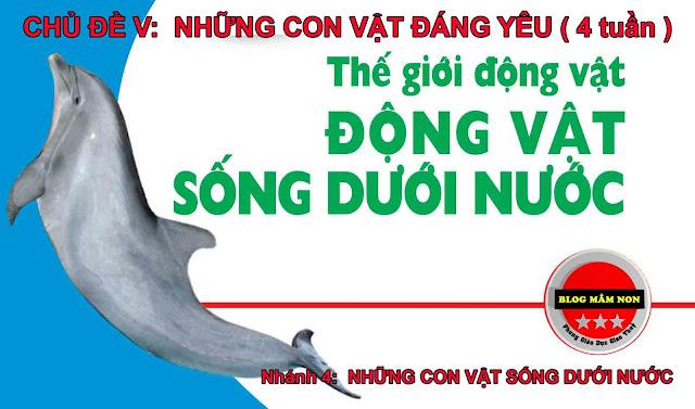 Giáo án chủ đề những con vật sống dưới nước - Giáo án nhà trẻ 24-36 tháng