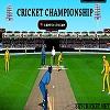 Online cricket championship game
