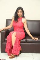 Sakshi Kakkar in Red Legsplit Sleeveless Gown at Dare movie Press meet ~  Exclusive 070.JPG