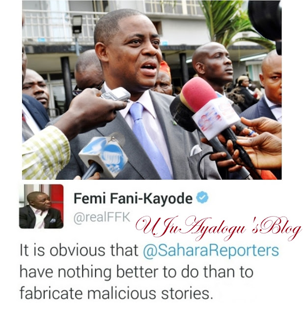 Fani-Kayode Reacts as Report Claims That His 3-year-old Marriage with ex-Beauty Queen Has Crashed