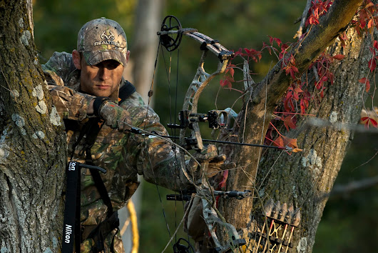 GREENHORN HUNTS WHITETAILS
