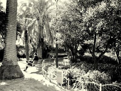 El blog de anita noire en la ciudad for Jardines del palau