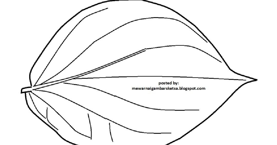 10 Gambar Daun Sirih Hitam Putih Cari Gambar Keren Hd