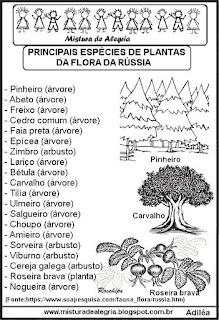 Espécies flora da Rússia copa mundial