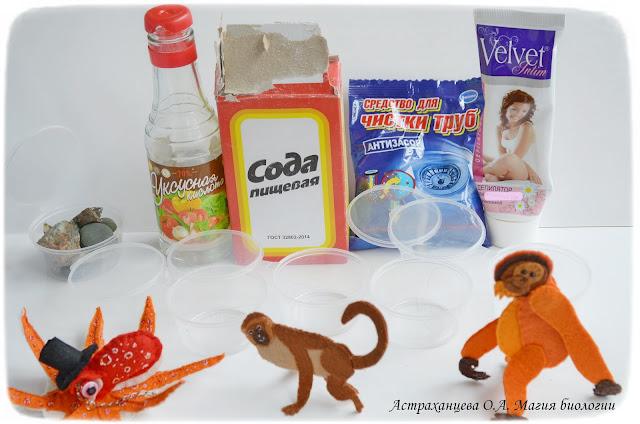 palchikovyj-teatr-opyty-s-volosom-prochnost-orangutan-osminog