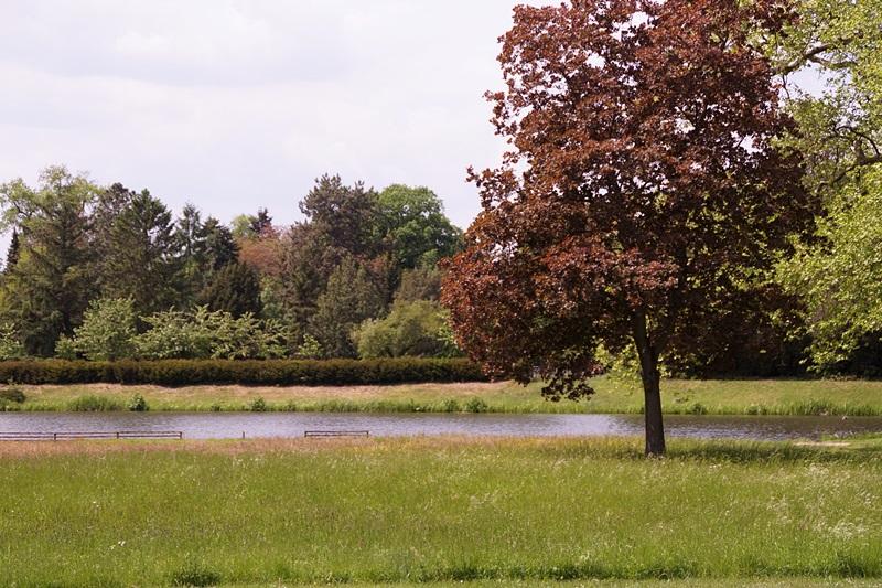 UNESCO-Welterbe Wörlitzer Park