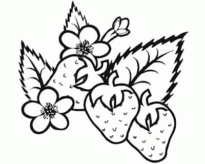 Gambar Mewarnai Buah Strawberry - 5