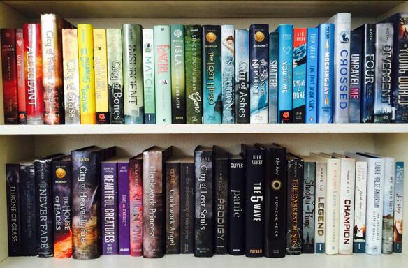 Fuera de Pginas Mi Obsesin por los libros y Tips para Estanteras