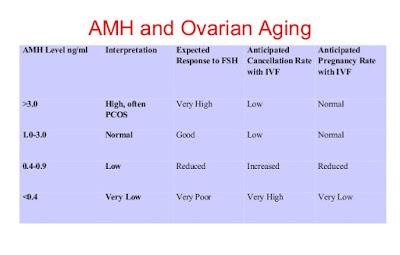 Kadar Hormon AMH