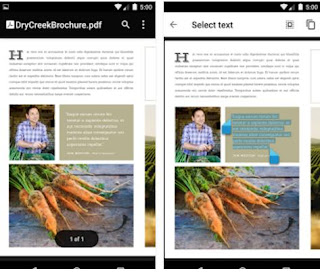 lettori pdf android