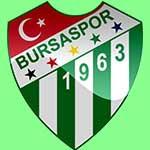 Bursaspor www.nhandinhbongdaso.net