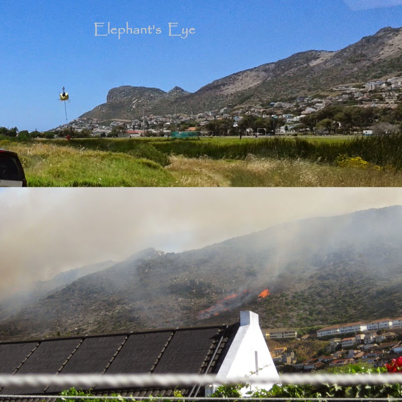 False Bay mountain fire in November 2014