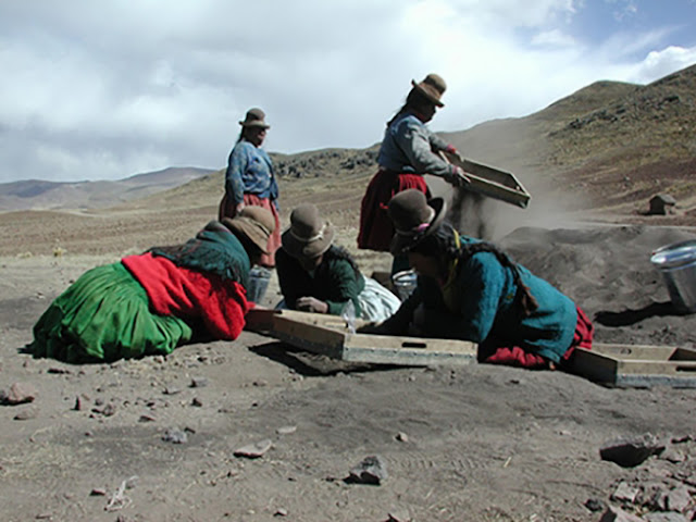 High altitude archaeology uncovers earliest evidence of potato consumption